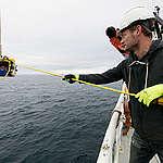 Uraauurtava tutkimus kertoo, kuinka kolmannes maailman meristä suojellaan vuoteen 2030 mennessä