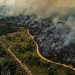 Tuoreet kuvat Amazonilta – tulipalojen tuhot mittavia