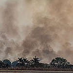 Suurin osa metsäpaloista on estettävissä