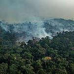27 vuotta toimintaa Amazonin puolesta