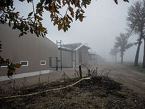 Factory Farm in Lescout, France. © Greenpeace / Wildlight / Selene Magnolia
