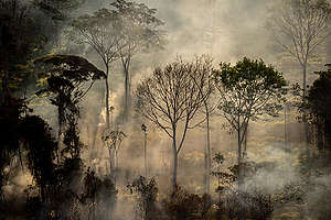 Deforestation and Fire Monitoring in the Amazon in July, 2020. © Christian Braga / Greenpeace