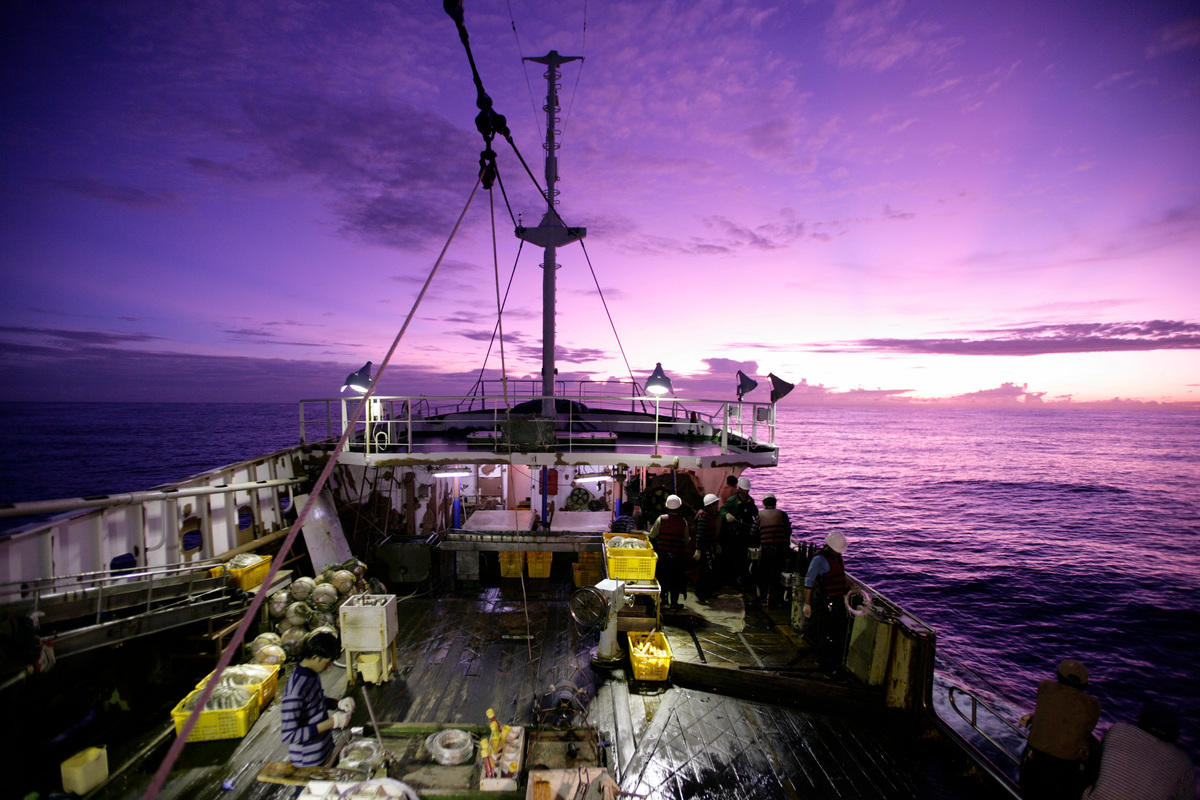 Fishing Documentation - Defending Our Oceans (Pacific: 2006). © Alex Hofford