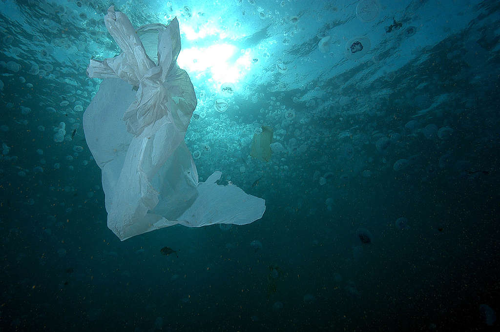 Plastic Bag in Water - Red Sea Coastal Development in Egypt - 2006. © Marco Care