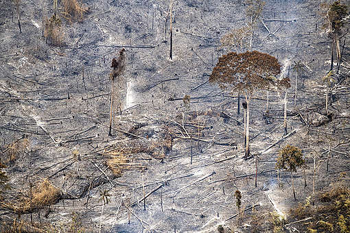 Forest Fires Aftermath in Brazilian Amazon. © Daniel Beltrá / Greenpeace