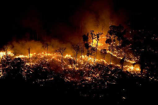 Forest Burning in the Amazon. © Greenpeace / Daniel Beltrá