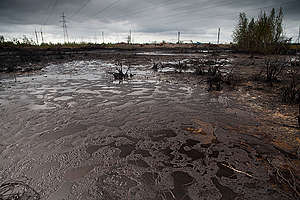 Oil Spill in Russia. © Greenpeace / Steve Morgan
