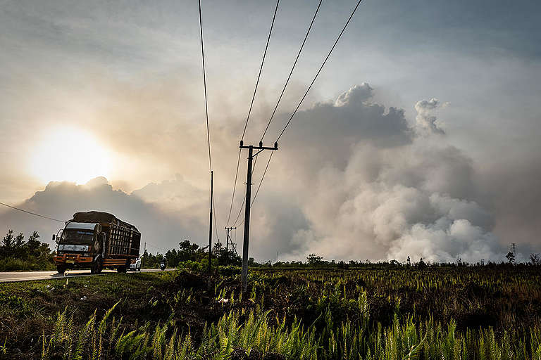 Forest Fires in Tanjung Taruna, Central Kalimantan. © Ulet  Ifansasti / Greenpeace