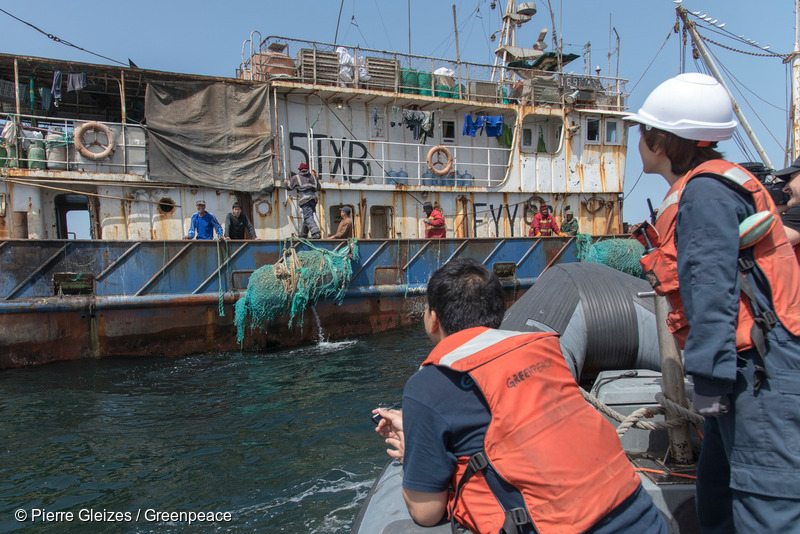 The Greenpeace ship Esperanza is on tour in West African waters to address the problem of overfishing in the region.