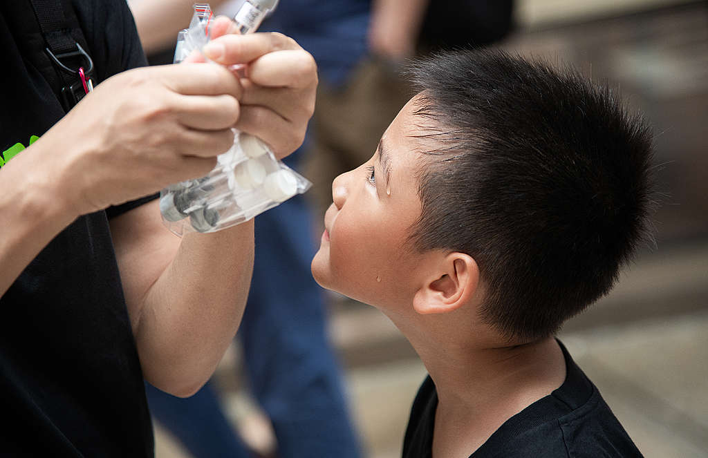 小小公民科學家。© Fung Pik Yee / Greenpeace