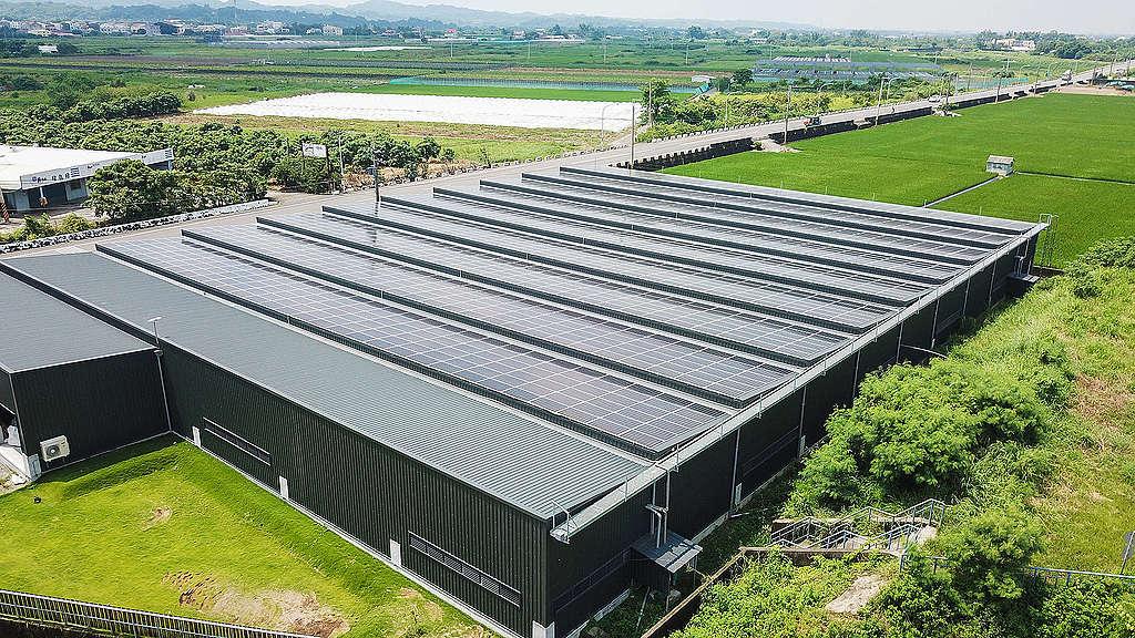 台南一個養殖場在屋頂鋪滿太陽能板,毋須犧牲用地和環境,也能發展可再生能源。 © Greenpeace / Huang Jhih Yao
