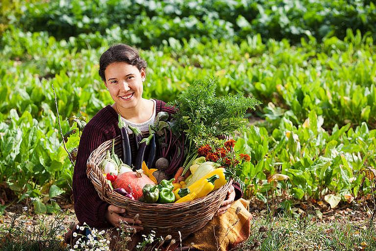 Biozöldségek. © Bence Jardany