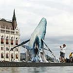 A Greenpeace hatalmas bálnákkal figyelmeztet a pusztító műanyagszennyezésre a Parlament előtt