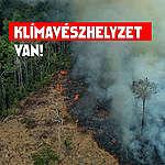 50-nél több közéleti személy követel klímavédelmet Magyarországnak