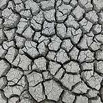 Európának azonnal lépnie kell, hogy megállítsa a sivatagosodást!