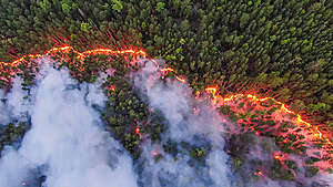Climate Emergency: Forest Fires in Siberia. © Julia Petrenko / Greenpeace