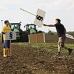 Kishantos és a Greenpeace jogerősen pert nyert a magyar állammal szemben