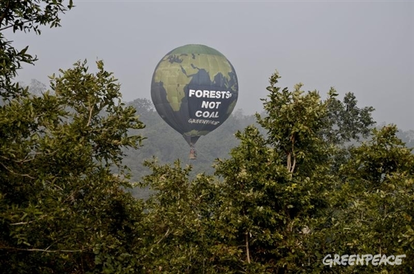 Greenpeace's hot-air balloon flies over the forests of Mahan in Madhya Pradesh.