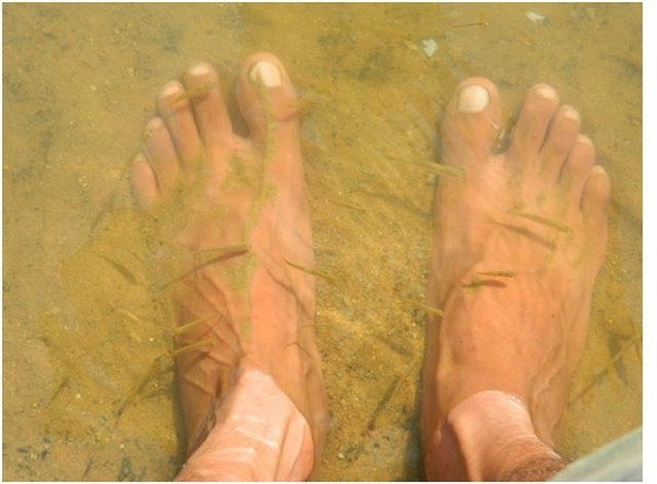 Foot spa, free of cost in Junglistan