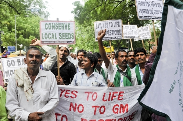 Over 2,000 people came together on August 8 for a day-long protest against the BRAI bill and Monsanto.