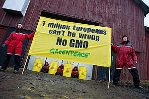 Greenpeace Blockade GMO Storage Facility in Northern Sweden. © Christian Åslund