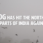 Video: Winter is Coming, and so is SMOG!