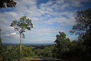 A View of Mahan Forests
