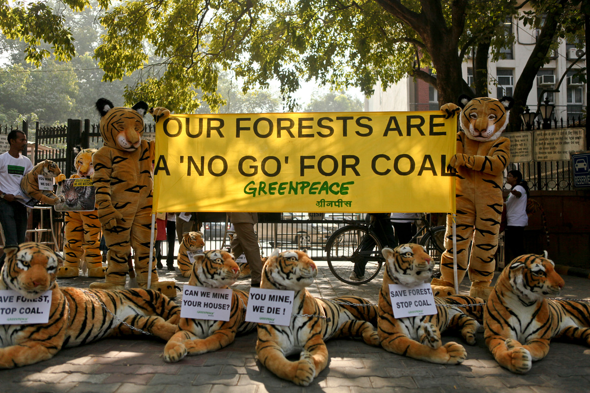 Tiger Action at Coal Ministry in India. © Sudhanshu Malhotra