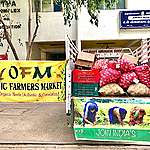 Circles of Solidarity: Farmers from Kodai, Ooty and Dindigul feed distressed communities in Chennai