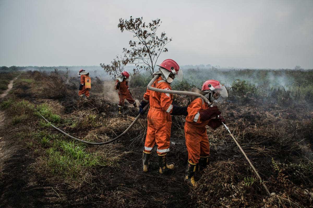 Tim Cegah Api di Kubu Raya, Kalimantan Barat © Rendra Hernawan / Greenpeace