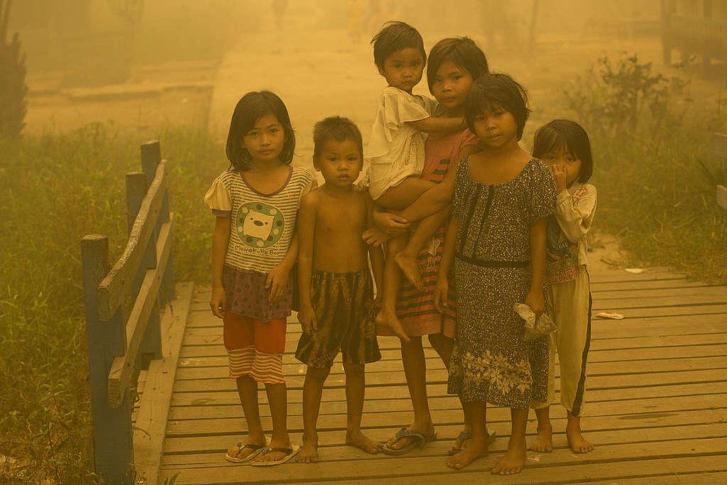 Haze in Central Kalimantan. © Ardiles Rante / Greenpeace