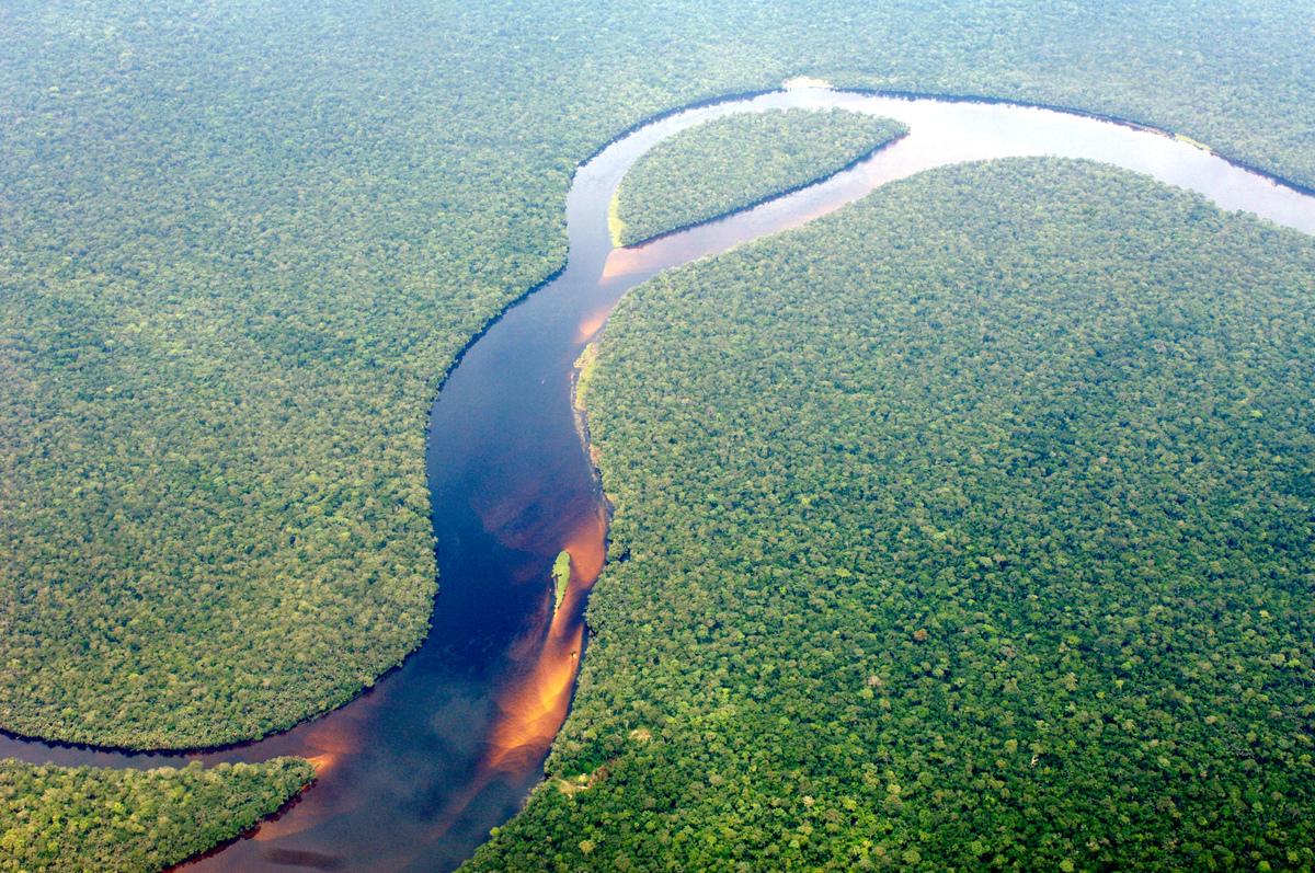 Congo Rainforest © Thomas Einberger / argum / Greenpeace