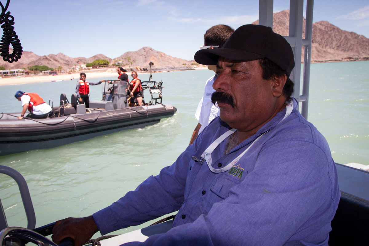 Vaquita Habitat Investigation in Mexico © Carlos Aguilera / Greenpeace