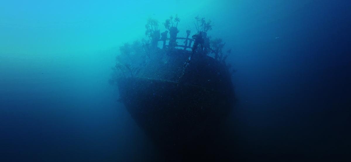 Wreck of Rainbow Warrior I in New Zealand © Holger Weber / Greenpeace
