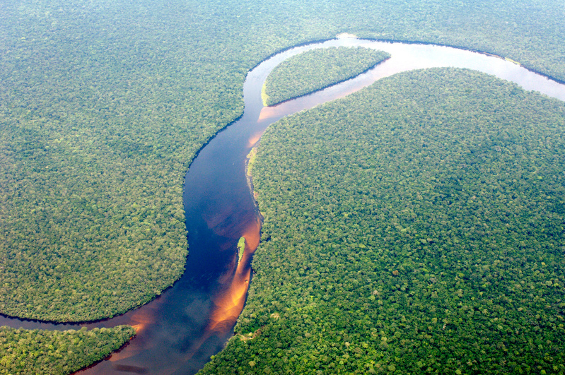 Aerial view of the Congo Basin rainforest © Thomas Einberger / argum / Greenpeace