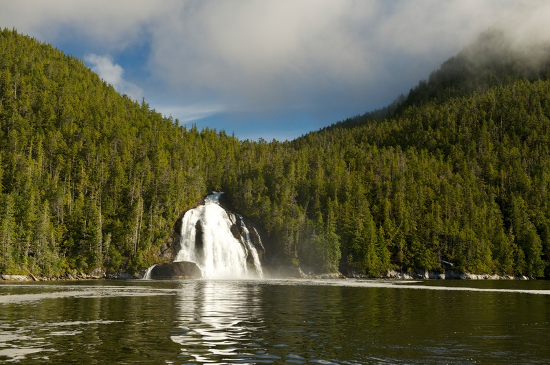 Great Bear Rainforest in Canada. Forest with waterfall © Oliver Salge / Greenpeace