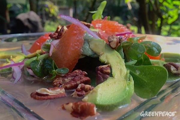 Purslane salad with citrus vinaigrette by Chef Daniel Bravo Garibi ©Greenpeace