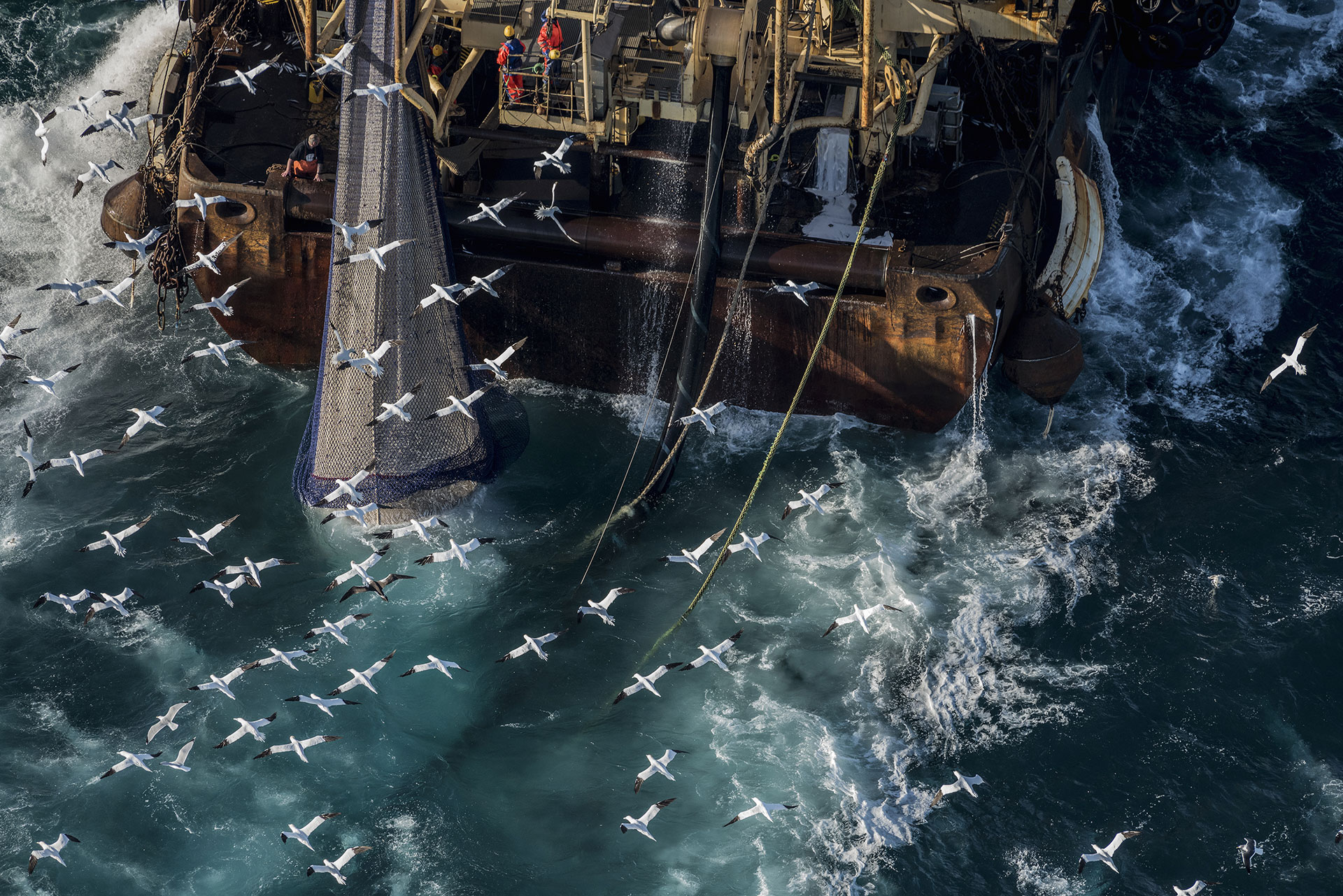 Fishing Activities in the English Channel © Christian Åslund / Greenpeace