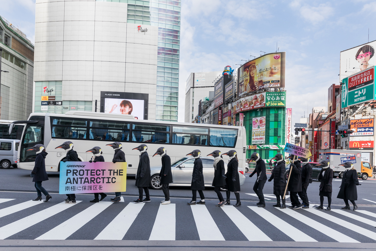 Rise of the Penguins in Tokyo © Jeremie Souteyrat / Greenpeace