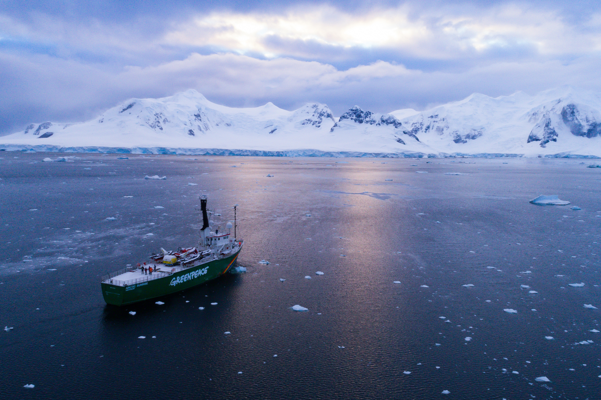 The Arctic Sunrise in the Antarctic © Sune Scheller / Greenpeace