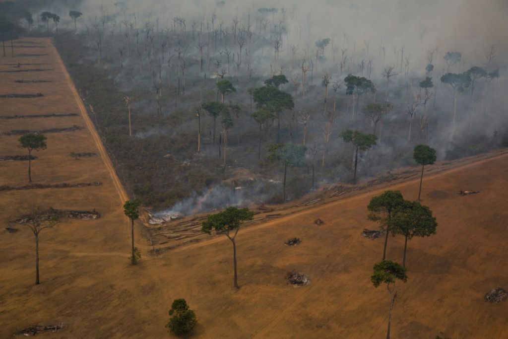 Amazon Rainforest in Burning Season © Otávio Almeida / Greenpeace
