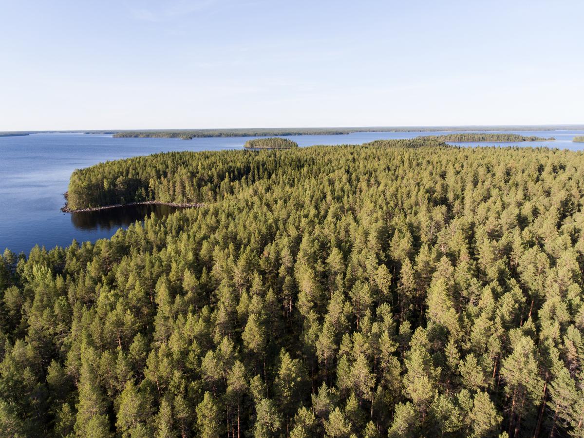 Island on Oulujärvi © Jani Sipilä / Greenpeace