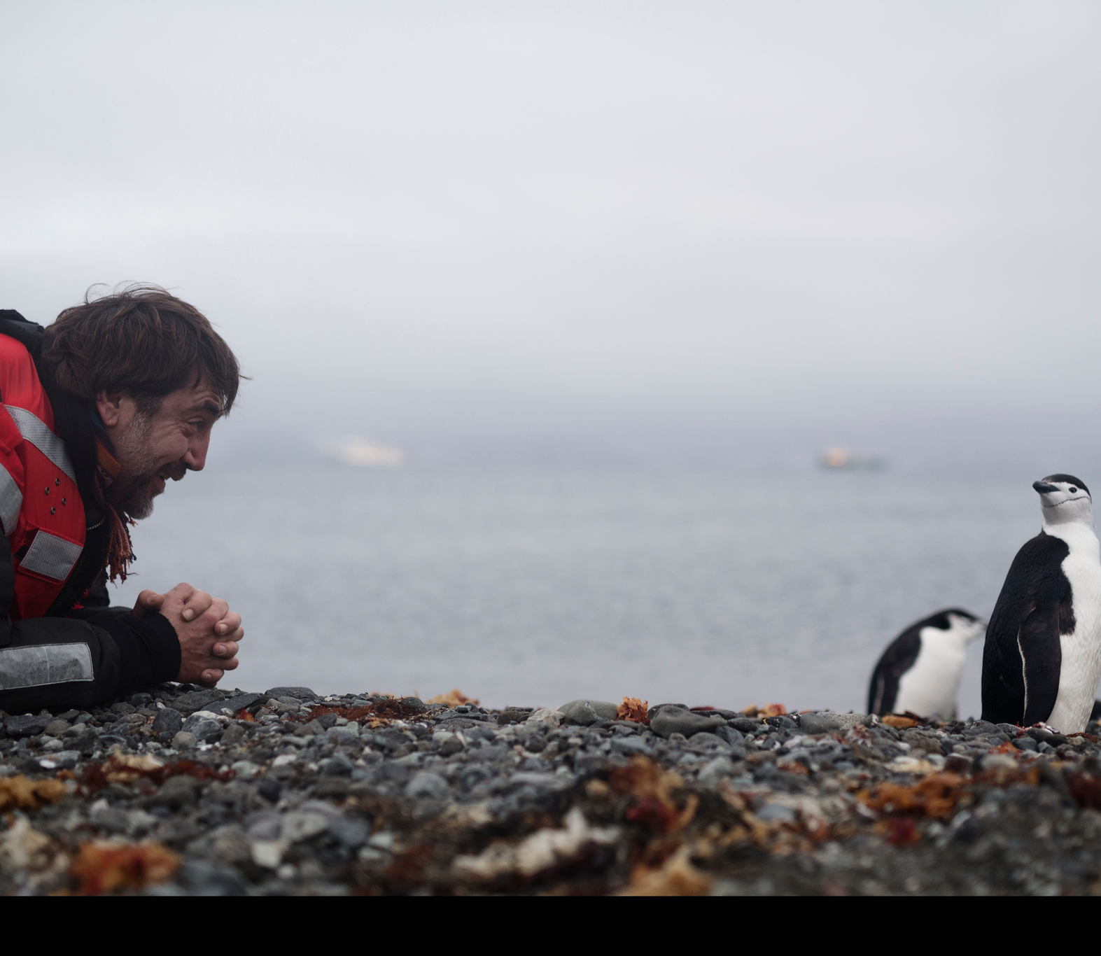 Carlos Bardem and Chinstrap Penguin in the Antarctic © Christian Åslund