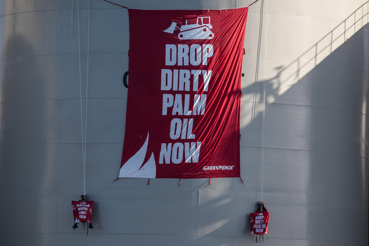 "Greenpeace activists unfurl a banner reading ""Drop Dirty Palm Oil Now"" at the Wilmar International refinery in Bitung, North Sulawesi © Jurnasyanto Sukarno / Greenpeace"