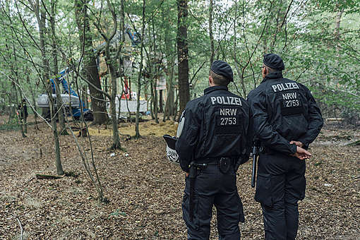 Background Image of Protests in Hambach Forest © Kevin McElvaney / Greenpeace