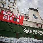 Greenpeace activists released in Spain after 33-hour detention over peaceful protest against dirty palm oil