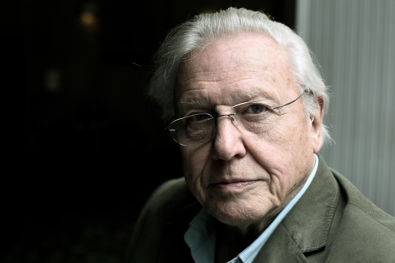 David Attenborough © Martin Godwin/Getty Images