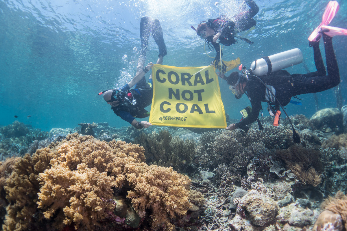 Underwater Banner at Raja Ampat in West Papua. © Awaludinnoer