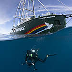 Divers with the Rainbow Warrior in the Great Australian Bight. © Richard Robinson