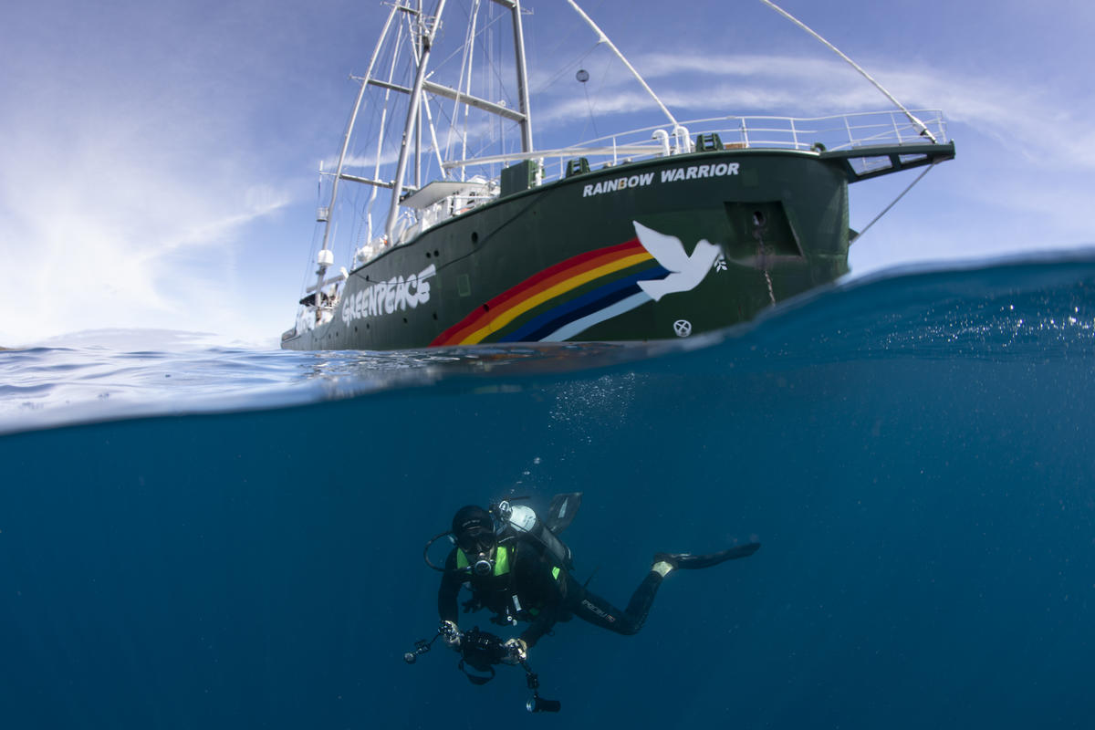 Diver with the Rainbow Warrior in the Great Australian Bight. © Richard Robinson